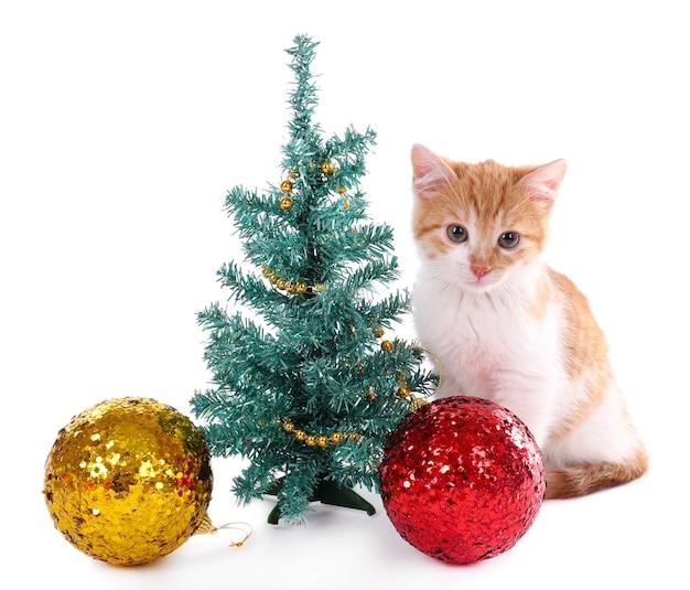 Kleine kitten met kerstversiering geïsoleerd op wit