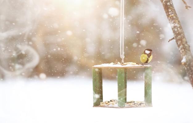 Kleine mees op de trog eet zaden. wintervogel.