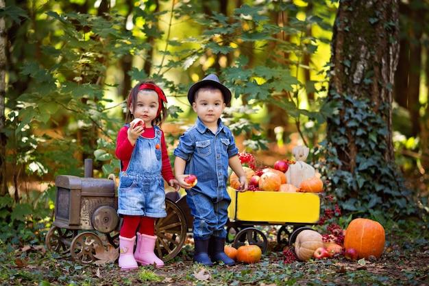 Kleine meisjes en jongensbaby in een tractor met een kar met pompoenen, viburnum, appels, herfstoogst