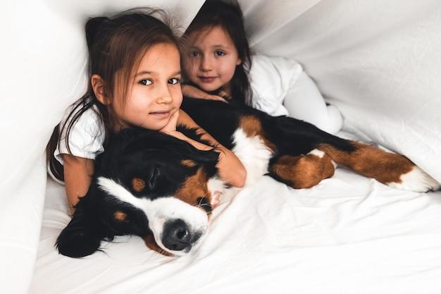 Kleine meisjes in bed met hond berner sennenhond, vriendschap