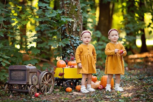 Kleine meisjesbaby-tweeling in een tractor met een kar met pompoenen, viburnum, appels, herfstoogst