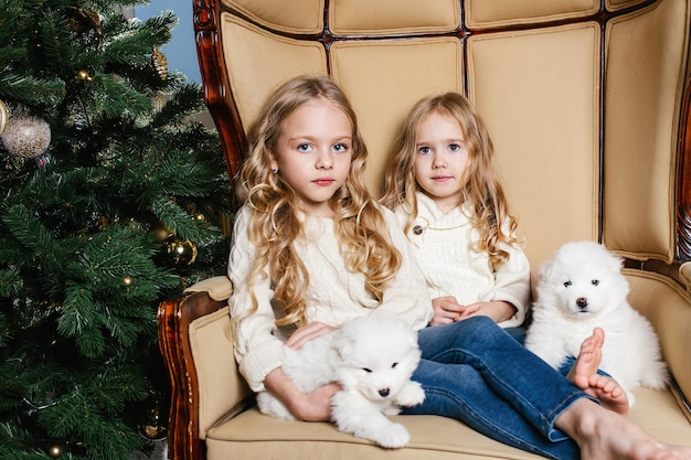 Kleine meisjeszusjes in witte kleren zitten op een stoel bij de boom met twee witte samojeed-puppy's en glimlachen.