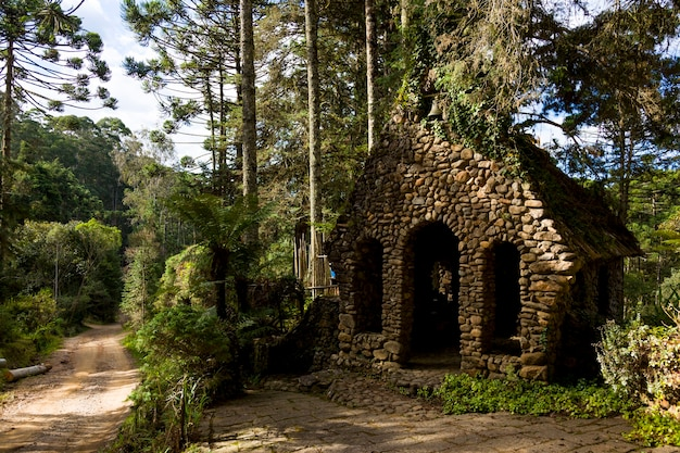 Kleine oude kerk gemaakt van steen, in het bos.