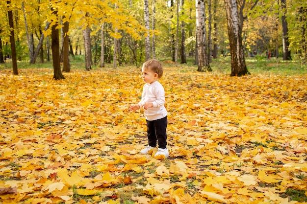 Kleine peuter lach staat in vallende bladeren op een tapijt van gevallen gouden esdoornbladeren in het park