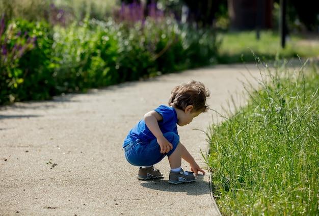Kleine peuterjongen op steegje in een park