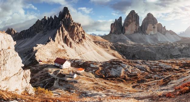 Kleine planten op de rotsen. uitstekend landschap van de majestueuze seceda-dolomietbergen overdag. panoramische foto