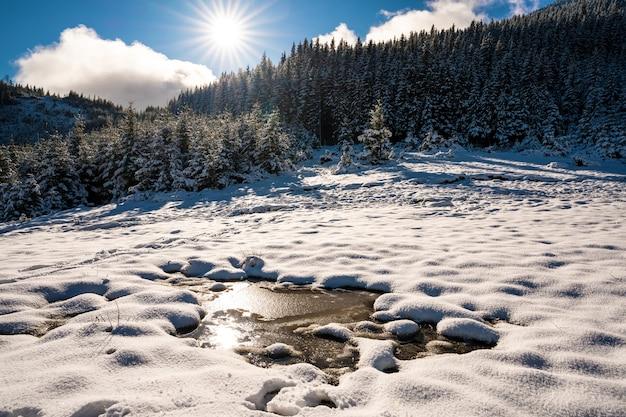 Kleine plas gesmolten sneeuw in de lentezon in de karpaten
