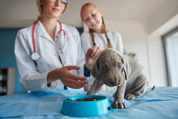 Kleine pup begint te eten