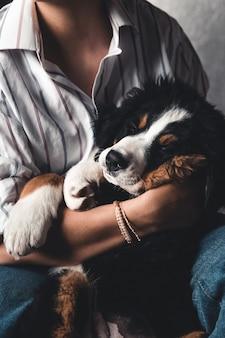 Kleine pup van berner sennenhond op handen van modieus meisje met een mooie manicure. dieren, mode