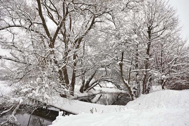 Kleine rivier in de winter. landelijke scène van januari, brug over kreek. bomen op rivieroever bedekt met sneeuw. winterwonderland na sneeuwstorm. kerstvakanties, reizen in wit-rusland