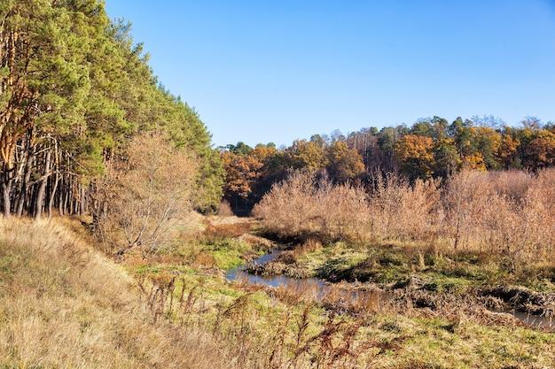 Kleine rivier verdroogt, overwoekerd met struiken en riet