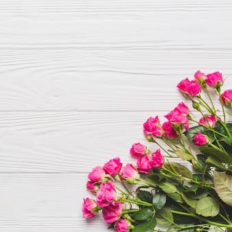 Kleine rozen op wit