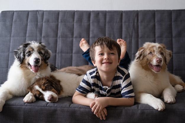 Kleine schattige gelukkige jongen met drie kleine schattige australische herder rode drie kleuren blauwe merle puppy hondje. liefde en vriendschap tussen mens en dier.