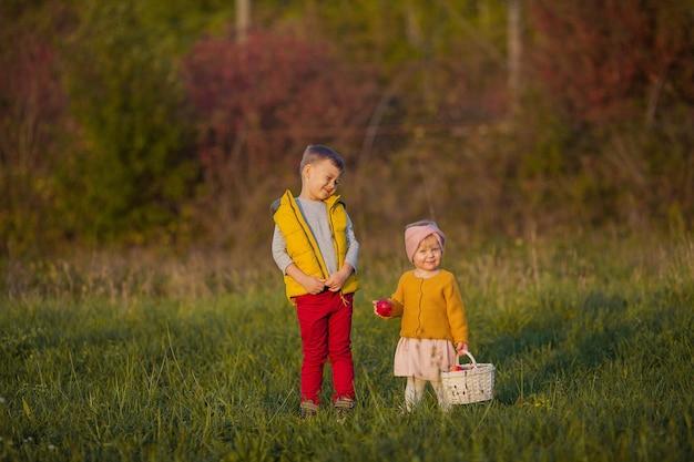 Kleine schattige jongen en meisje spelen in de herfsttuin. broer en zus met rode appels. warme en heldere herfst.
