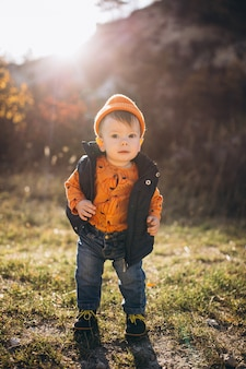 Kleine schattige jongen in een herfst park