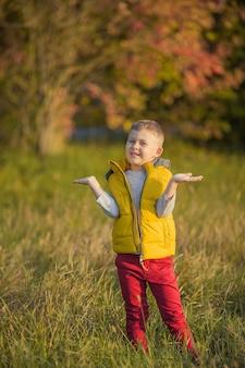 Kleine schattige jongen van 5 jaar oud wandelingen in de herfsttuin. portret van een gelukkige jongen in lichte, herfstkleren. warme en heldere herfst.