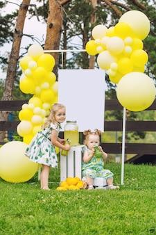 Kleine schattige kinderen twee meisjes mooi en gelukkig op het groene gras met ballonnen en limonade