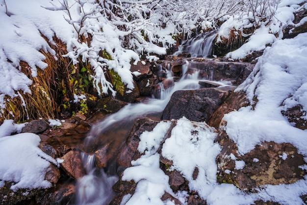 Kleine snelle stroom tussen kleine natte stenen en koude witte sneeuw in de pittoreske karpaten
