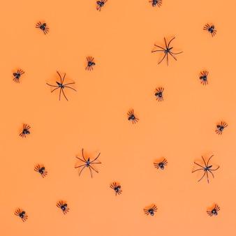 Kleine spinnen gelegd op volgorde