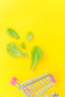 Kleine supermarkt kruidenier duwkar om te winkelen met groene slabladeren geïsoleerd op geel kleurrijk trendy