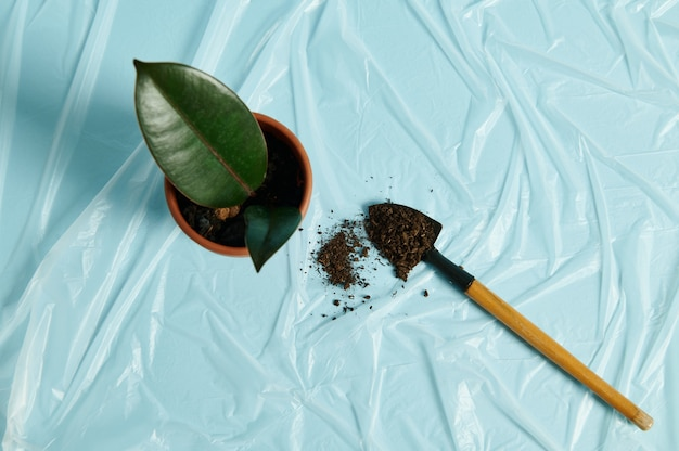 Kleine tuinschop met verspreide grond liggend naast kleipot met kamerplant op transparante folie