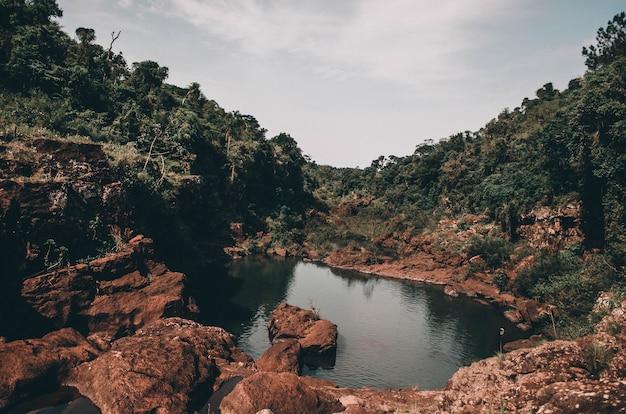 Kleine vijver omgeven door rotsen bedekt met bomen en mos