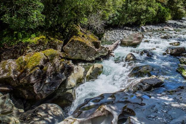 Kleine waterval in het bos van nieuw zeeland