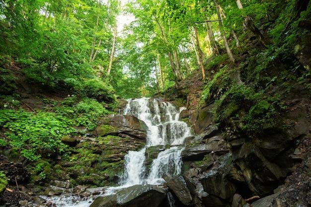 Kleine waterval van bergrivier tussen de bomen