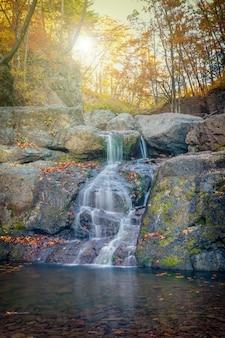 Kleine watervallencascade in de kleuren van het de herfstseizoen in het bos