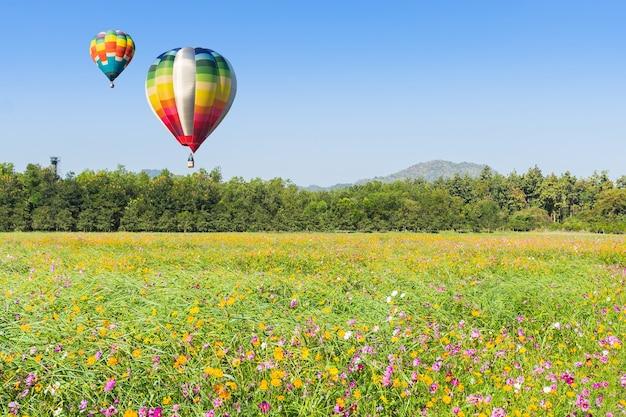 Kleur hete luchtballon in de lucht over de groene rijst ingediend