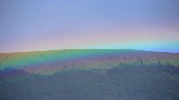 Kleuren van de regenboog die het bos in de heuvels bedekken