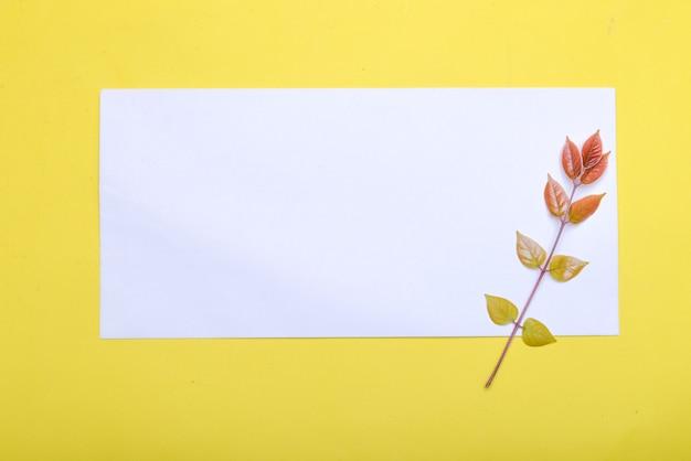 Kleurrijk blad en leeg wit papier met een gekleurde achtergrond. leeg witboek voor exemplaarruimte