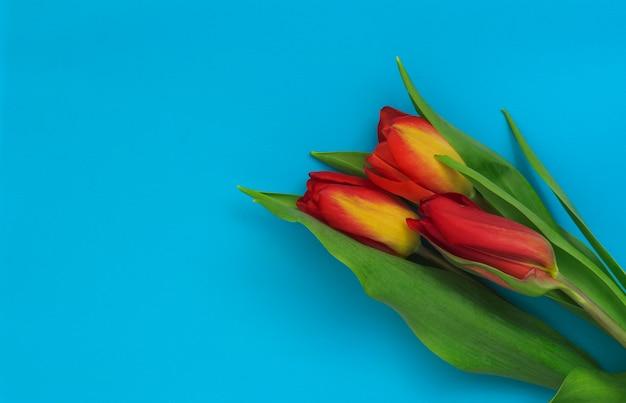 Kleurrijk boeket tulpen op een blauwe achtergrond.