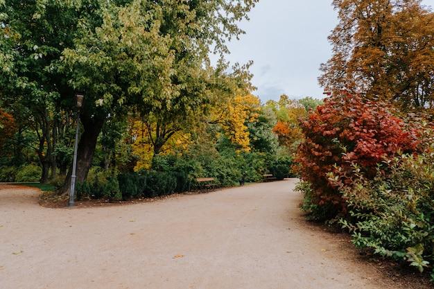 Kleurrijk de herfstpark in warshau, polen
