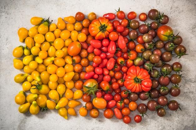 Kleurrijk gamma tomaten
