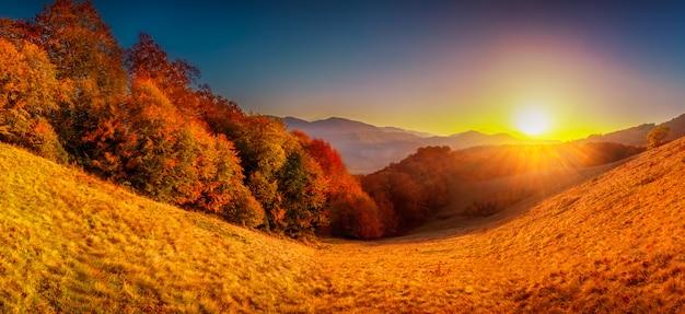 Kleurrijk herfst landschap