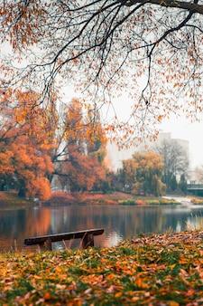 Kleurrijk herfst park. de herfstbomen met gele bladeren in het de herfstpark. belgorod. rusland.
