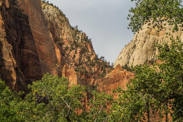 Kleurrijk landschap van zion nationaal park utah