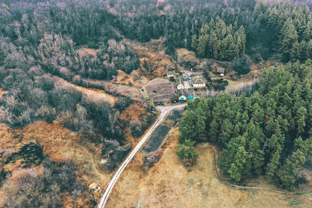 Kleurrijk sfeervol landschap - een huis bij het verbrande dennenbos met een onverharde weg en harmonieuze kleuren