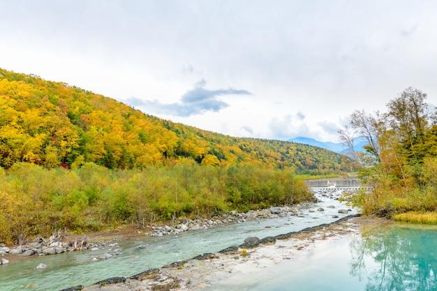 Kleurrijk van bos op de berg dichtbij blauwe vijver