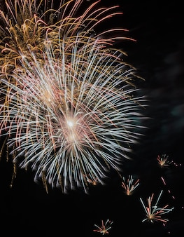 Kleurrijk vuurwerk in de zwarte lucht