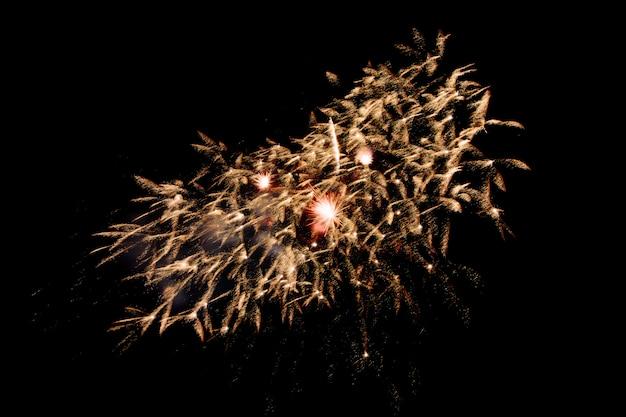 Kleurrijk vuurwerk tegen een zwarte nachthemel. vuurwerk voor het nieuwe jaar. mooi kleurrijk vuurwerk op het stedelijke meer voor viering