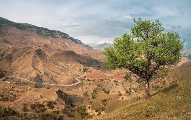 Kleurrijk zonnig groen landschap met silhouetten van grote rotsachtige bergen en epische diepe kloof.
