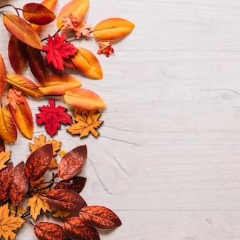Kleurrijke bladeren aan de zijkant