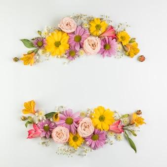 Kleurrijke bloemdecoratie met ruimte voor het schrijven van de tekst die op witte achtergrond wordt geïsoleerd