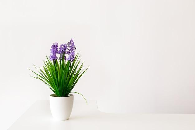 Kleurrijke bloemen in witte pot.