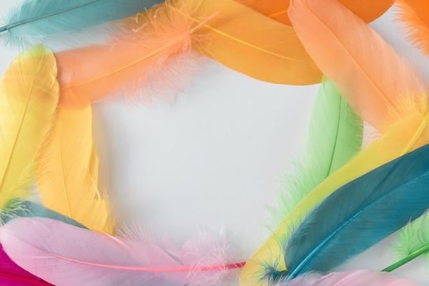 Kleurrijke compositie gemaakt van veren. minimaal boho-stijl kleurenconcept. plat lag achtergrond.