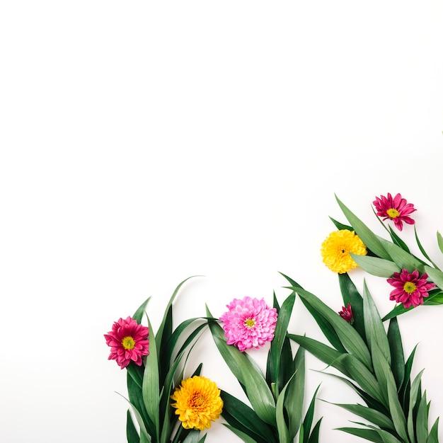 Kleurrijke decoratie op witte achtergrond
