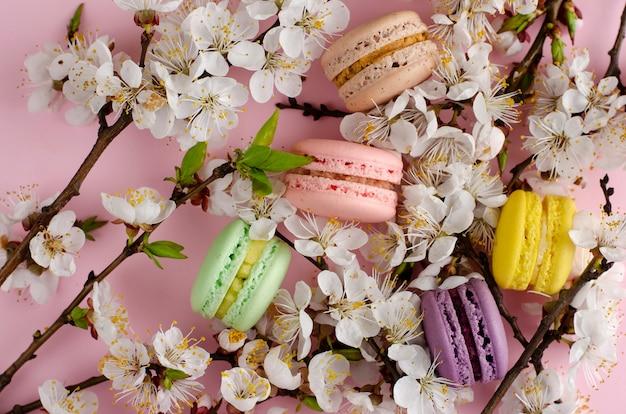 Kleurrijke franse die macarons of makarons met bloeiende abrikozenbloemen worden verfraaid op pastelkleurroze