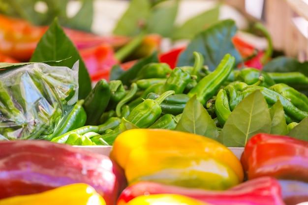 Kleurrijke groene, rode en gele paprika's